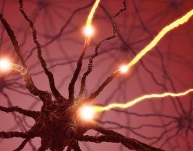 Nuevas perspectivas en la cirugía de la epilepsia